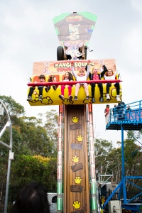 OWPS Community Festival Rides